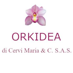 ORKIDEA DI CERVI MARIA & C. S.A.S. Impresa di pulizie a Parma