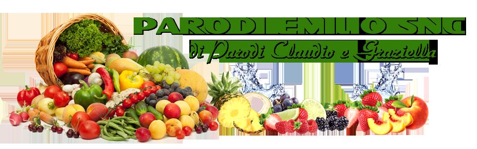 PARODI EMILIO SNC DI PARODI CLAUDIO E GRAZIELLA