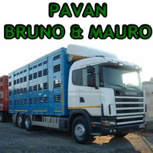 PAVAN BRUNO & MAURO S.N.C.