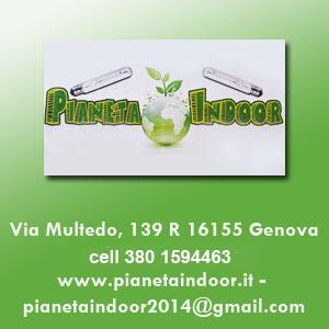 Floricoltura a genova trovavetrine it for Vivai genova