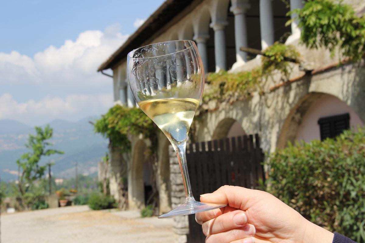 la strada dei vini