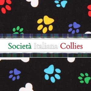 SOCIETA' ITALIANA COLLIES - Tel:    Presidenza:  349.5611795 . Segreteria: tel/fax. 031.521352 . cell 338.1961672