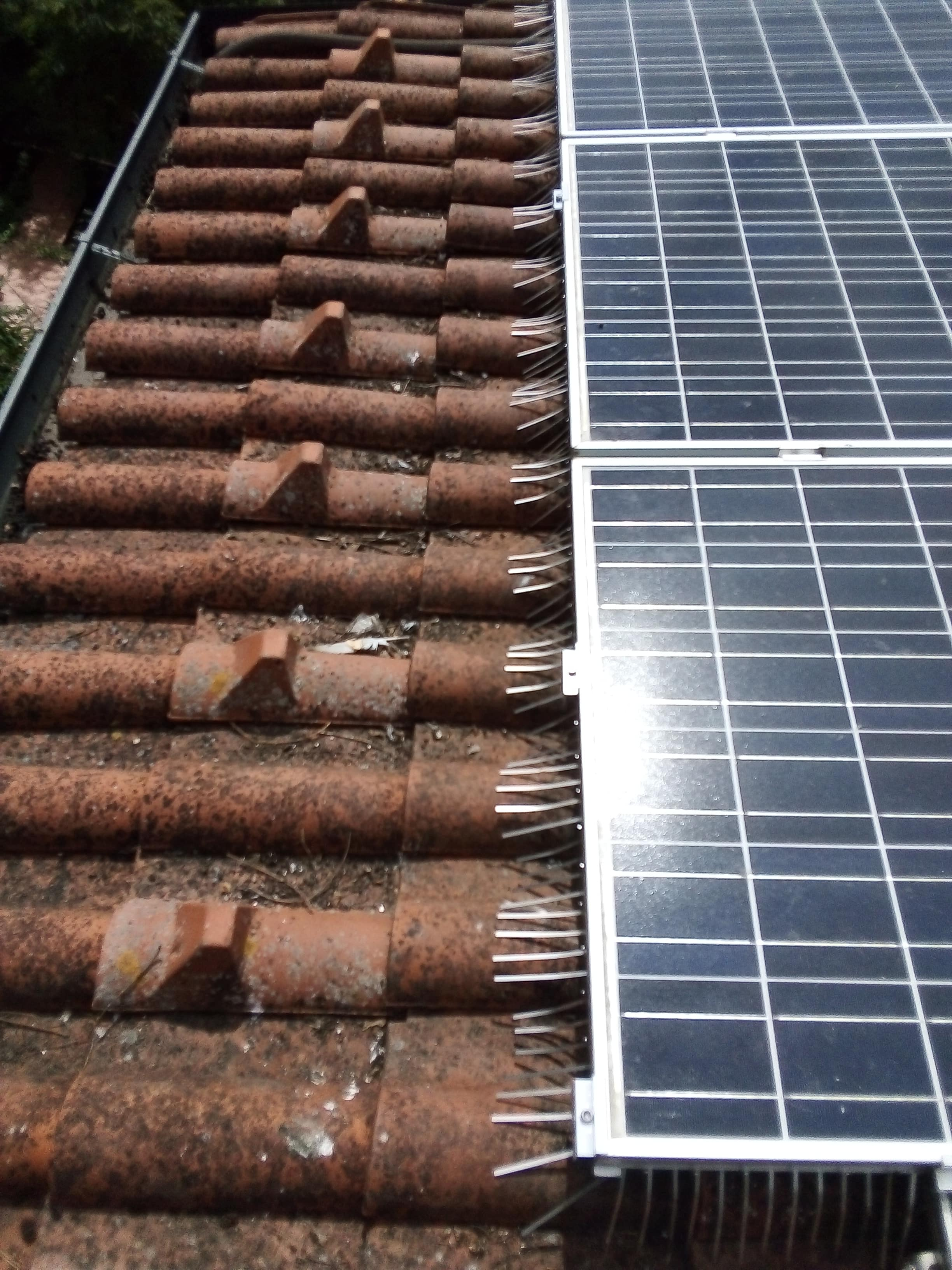 sistema antipiccioni su imp. fotovoltaico
