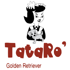 TATARO' GOLDEN RETRIEVER DI LUCA GIANNUBILO E LUCCHETTI ROSARIA