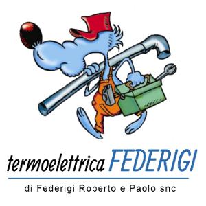 TERMOELETTRICA FEDERIGI DI FEDERIGI ROBERTO E PAOLO SNC