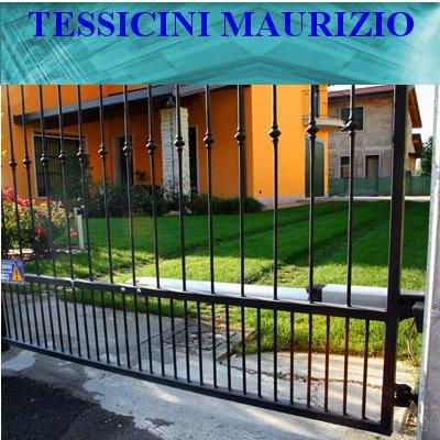 Tessicini Maurizio