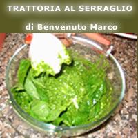 TRATTORIA AL SERRAGLIO di Benvenuto Marco