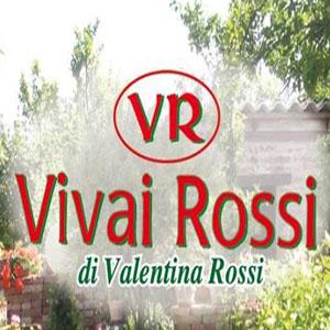 VIVAI ROSSI DI ROSSI VALENTINA