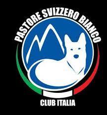 Club Italia Pastore Svizzero Bianco