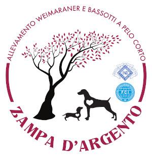 WEIMARANER ZAMPA D'ARGENTO